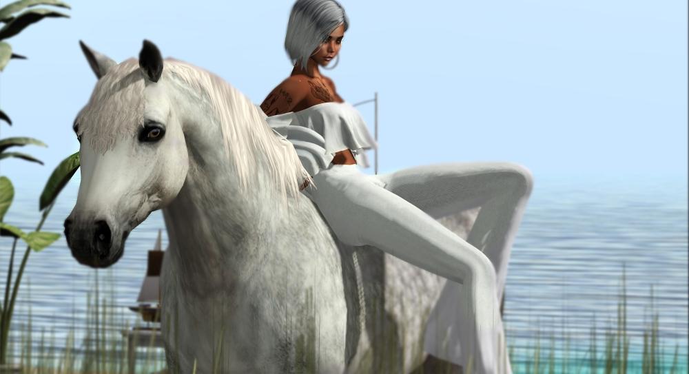 20200510 Horse I