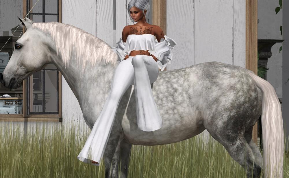 20200510 horse II