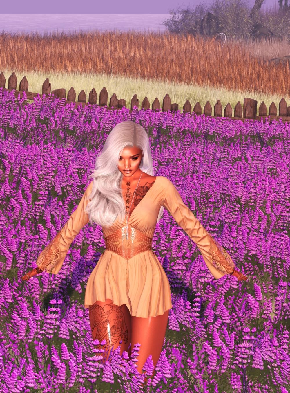 20200617 sea of lavender ii