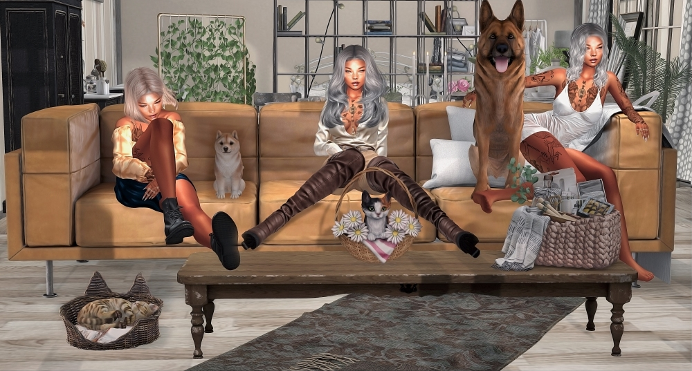 20200802 me myself and I... and the fur babies